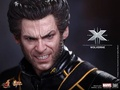 HOT TOYS 1/6 MMS187 X-MEN X戰警 最後一戰 金鋼狼 The Last Stand Wolverine