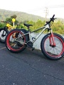 Iride giant fat bike