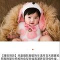 狗寶寶造型服