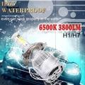 hanoi_C6汽車led大燈led車燈