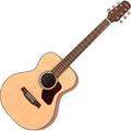 【金聲樂器廣場】Walden T550 面單板 旅行木吉他