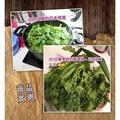 神奇蔬果保鮮盒/保鮮袋