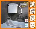 【東益氏】CAESAR凱撒蹲式馬桶 手控無段式省水蹲便 CT1250-65.5cm 白色 可加購三角水箱與水箱配件