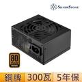 【SilverStone】300W 80 PLUS 銅牌認證 電源供應器(銀欣_SFX ST30SF_第二版本)