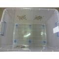 莎巴部落♡A800全新改造整理箱