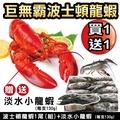 【海陸管家】海鮮雙拼組-波士頓龍蝦+淡水小龍蝦