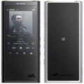 SONY Hi-Res Walkman 64G 數位隨身聽 NW-ZX300