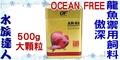 【水族達人】新加坡OCEAN FREE《OF AR-G1 傲深龍魚禦用飼料 FF914 (大顆粒) 500g》仟湖秘方/上浮性/泰國虎、血鸚鵡、皇帝魚、鴨嘴魚適用