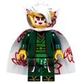LEGO 樂高  幻影忍者 人偶 njo383 晴美公主  70643