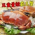 【OurMart嚴選食坊】蟹蟹您再度光臨★英國XL霸王麵包蟹(熟凍)★體形巨大蟹鉗肥大肉質鮮甜有彈性