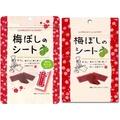 [丁師傅]日本 IFactory 梅片 14g 梅片 梅干 梅乾片 酸梅片 梅子 梅干片