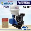 大井泵浦 TP825 加壓馬達。1/2HP 不生銹 塑鋼抽水機 加壓機 抽水機。附無水斷電
