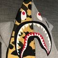 Ape 鯊魚外套 L號