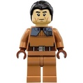LEGO 樂高積木 人偶 星戰 STARWARS Commander Sato 佐藤 司令 75158 sw0758