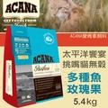 【ACANA愛肯拿 太平洋饗宴】挑嘴貓無穀 多種魚玫瑰果(5.4kg)