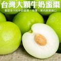 果物樂園-台灣頂級特大顆牛奶蜜棗禮盒(5斤±10%含箱重)