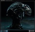 『玩模坊』Sideshow Alien Warrior 戰鬥異形LSF 傳奇胸像1:2
