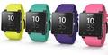 SONY SmartWatch 2 SW2 原廠 防水藍芽智慧手錶錶帶/手錶錶帶/原廠錶帶/替換式錶帶/神腦公司貨
