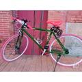 海尼根單速車腳踏車含配備