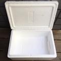 保麗龍箱 保麗龍盒3kg 3公升 低溫宅配可用 冷凍水產海鮮食品食物 可保冰