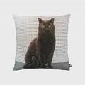 Art de Lys法國原裝 2161G黑色貓咪抱枕套36x36
