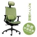 辦公椅/電腦椅/高級人體工學透氣網背辦公椅(頭靠枕+腰靠枕) -綠【天空樹生活館】