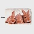 Fashy德國原裝進口Bunny兔冰/熱水袋