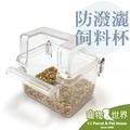 《寵物鳥世界》JP0013 日本小林 防潑灑飼料杯 (抗菌版) K16 食盆 食皿 飼料盒 文鳥 虎皮 愛情鳥 橫斑