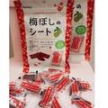 熱銷零嘴✨日本Ifactory 日本梅片 板梅 大包裝40g有夾鏈袋 梅片 梅干片 小包14g 日本熱賣商品