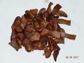 S-088【種子盆栽】桃花心木種子(已斷翅),1份30元40顆。別名:向天果