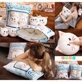 蘭妮代購🌸超特別❤️一大袋零食抱枕(是抱枕喔!不是零食喔!)預購 1808017