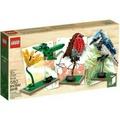 LEGO 21301 鳥 絕版 全新未拆