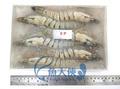 B3【魚大俠】SP008進口海大草蝦 6尾裝(白蝦 草蝦 泰國蝦 甜蝦 龍蝦 天使紅蝦)