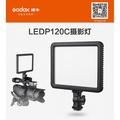 相機專家 Godox 神牛 LED P120C 116顆LED 平板型 LED 可調色溫 超薄型 持續燈 公司貨