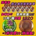 超便宜現貨🔥一杯只要26元 盛香珍 霸之果實果凍 葡萄口味 衝評價 一箱12入只要$320 吃得到滿滿的果肉超滿足🔥