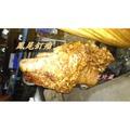 【阿里珍藏】(高山牛樟瘤~ 油香鳳滿釘瘤) 檜木 黃檜 牛樟 櫸木 可現場訂製A638