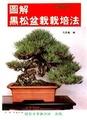 圖解黑松盆栽栽培法