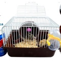 倉鼠籠 - 超大別墅金絲熊基礎籠倉鼠用品套餐豪華相親籠雙層