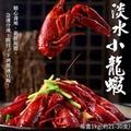 【海肉管家】印尼進口淡水小龍蝦x2盒(每盒21~30隻/約1Kg±10%)