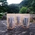野生牛樟葉茶包10包裝。3袋免運費
