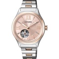 Citizen Eco-Drive Women's Watch Silver and Gold Stainless Steel Strap PC1009-51W - intl