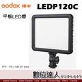 Godox 神牛 LEDP120C 平板 LED 燈 / 7吋 可調色溫 補光燈 柔光燈 攝影燈 棚燈 直播 數位達人