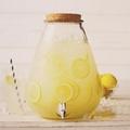 超大號10升加厚帶木塞玻璃飲料桶帶龍頭果汁灌釀酒罐泡藥酒密封罐  HM 居家物語