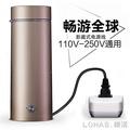 海外精品/電熱杯電熱水杯小型便攜出國旅行電熱水壺迷你小容量保溫加熱燒水 igo