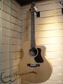 『追夢者樂器』Walden G570 CE 單板 電木吉他 民謠吉他 木吉他 附原廠琴袋