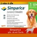 Simparica (2กล่องมี 6เม็ด) ซิมพาริคา สำหรับสุนัข น้ำหนัก 20 - 40 กิโลกรัม ชนิดเม็ดเคี้ยว ป้องกันและกำจัดเห็บ หมัด ขี้เรื้อน ไรหู ปกป้องเต็มประสิทธิภาพยาวนานถึง 5 สัปดาห์