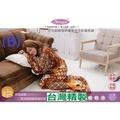 大特價可超取》台灣製造超厚袖毯子超保頂級懶人毯子》(袖毯)(冷氣毯子)好攜帶(居家或露營)