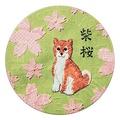 STEAMCREAM蒸汽乳霜 837-SHIBAZAKURA-櫻櫻花香
