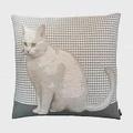 Art de Lys法國原裝 2162G白色貓咪抱枕套50x50