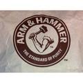 現貨 美國鐵鎚牌 小蘇打 25公斤 含運730元 進口食品級 小蘇打粉 ARM & HAMMER 細粉 25kg